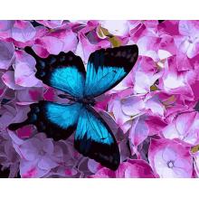 """Картина по номерам """"Бабочка на цветах"""""""