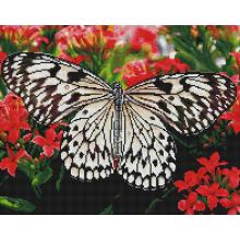 """Алмазная мозаика 40х50 """"Бабочки на цветах"""""""